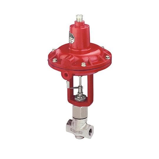 Microflow globe valve Badger 200