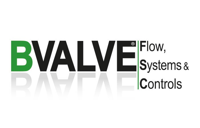 Bvalve distributor logo