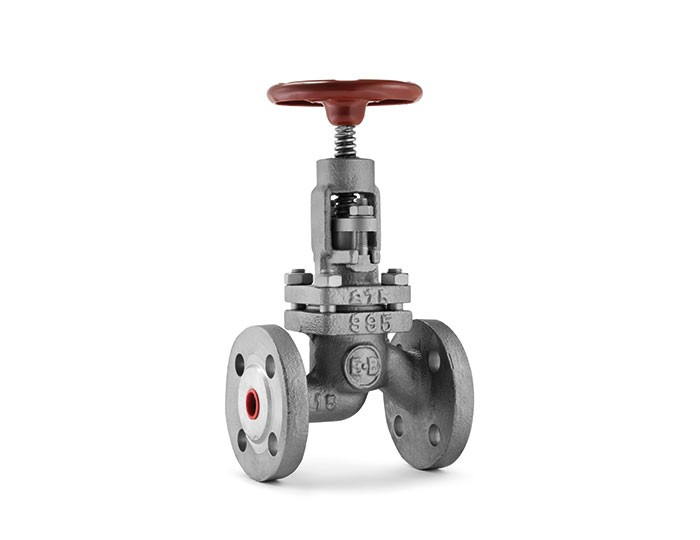 Globe valves category image