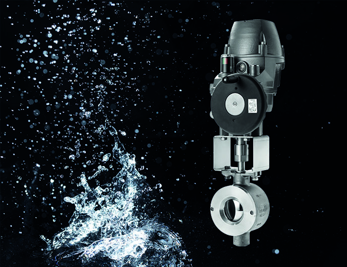 Valve for water treatment